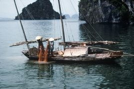 Fishing in Ha Long Bay, Vietnam